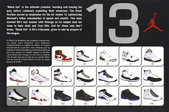 Air Jordan XIII – 2004