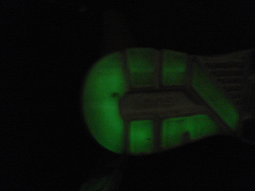 DSCN6354 880x660 puma faas 600s glow
