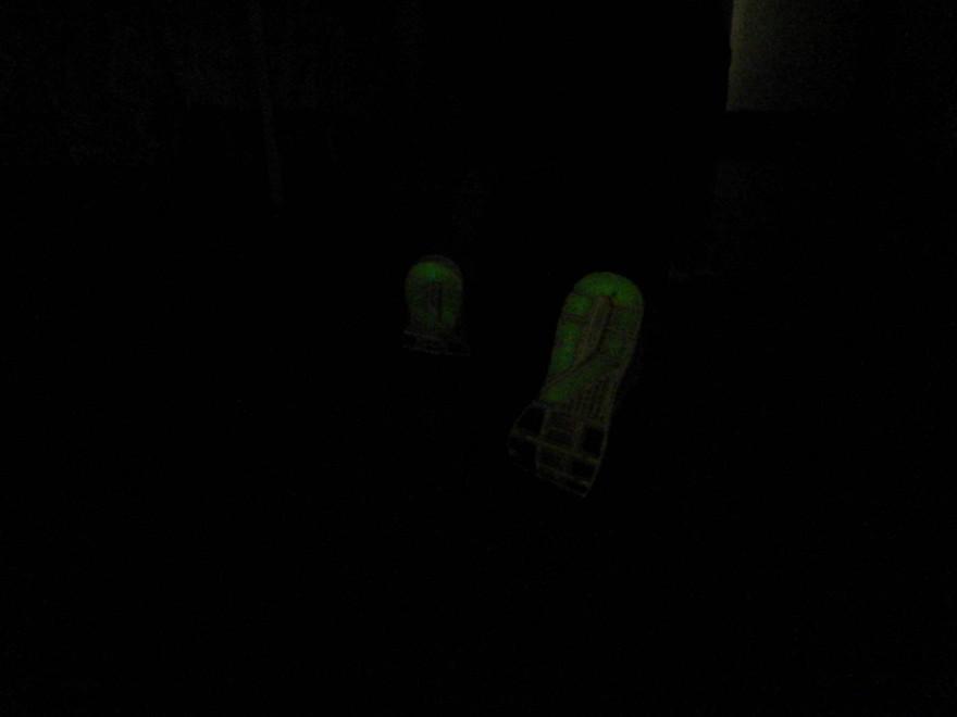 DSCN6357 2 880x660 puma faas 600s glow