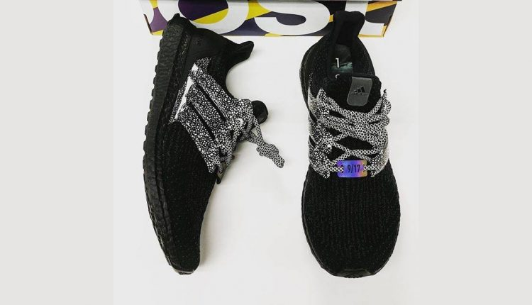 adidas-ultra-boost-concepts-friends-family-4