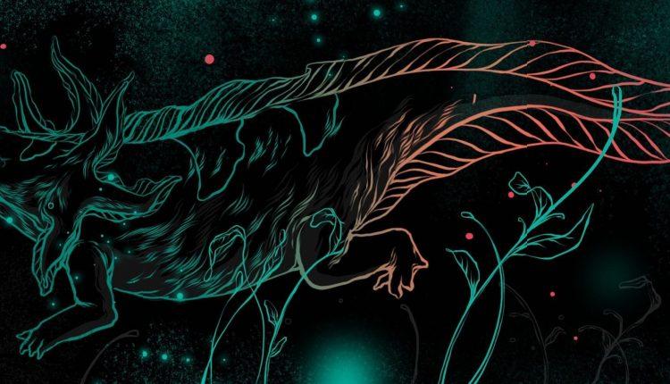 Lust Reebok Axolotl DMX (5)