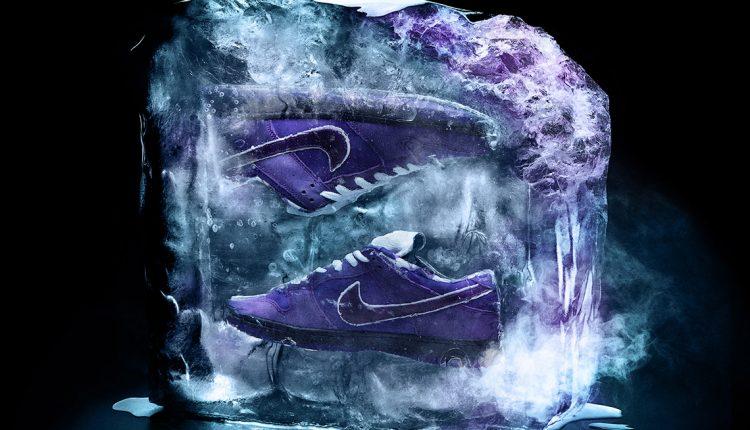 concepts-purple-lobster-nike-sb-dunk-1