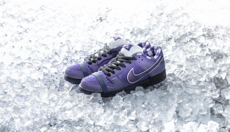 concepts-purple-lobster-nike-sb-dunk-5