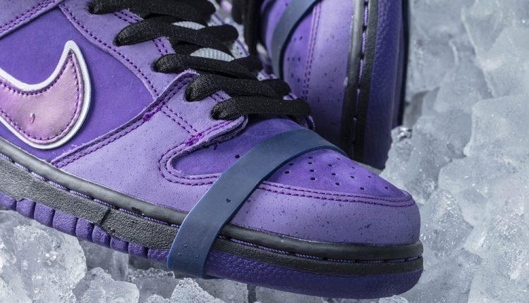 concepts-purple-lobster-nike-sb-dunk-6