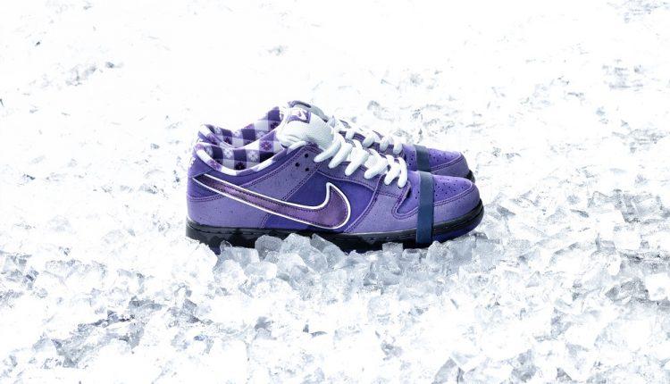 concepts-purple-lobster-nike-sb-dunk-8