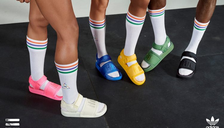 news adidas Originals by Pharrell Williams 19FW Now Is Her Time (3)