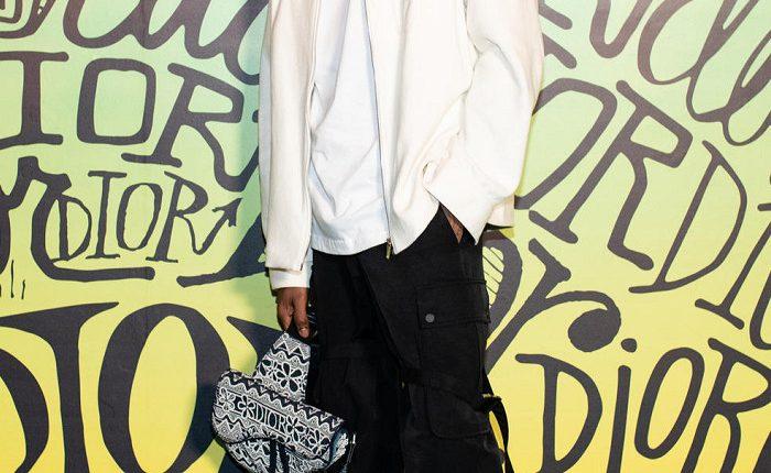 Dior Air Jordan 1 (10)