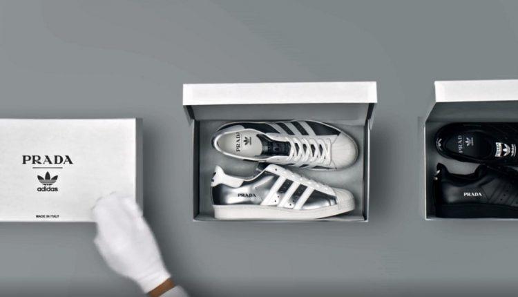 adidas Originals Prada Superstar cover